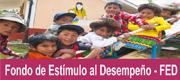 Fondo de Estímulo al Desempeño (FED)